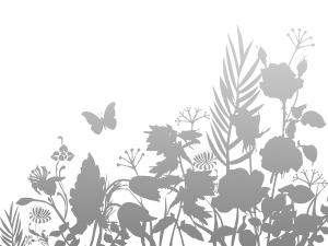 garden_7399