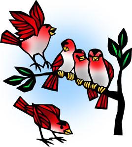Icon1Lect12A-birds